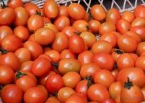 Local cherry tomatos