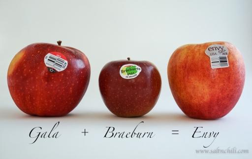 saltnchili_envy_apple_4