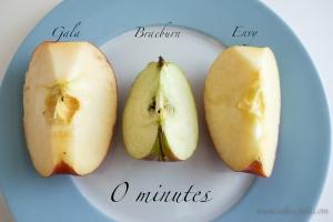 saltnchili_envy_apple_5b