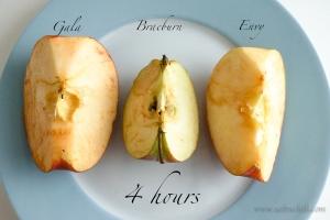 saltnchili_envy_apple_8b