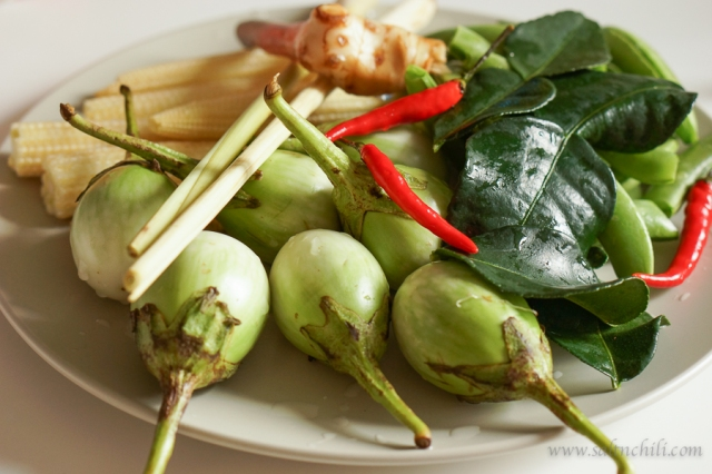 saltnchili_thai_green_curry_ingredients
